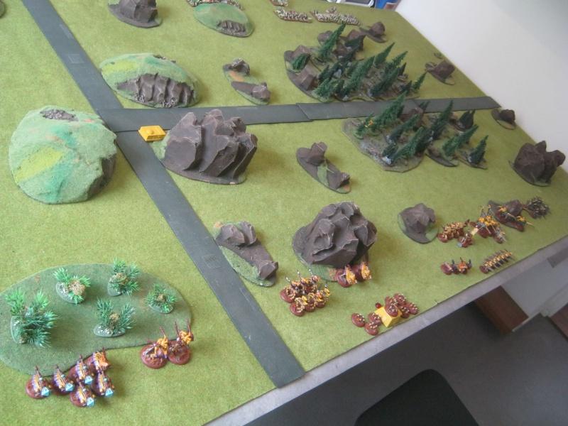 Assaut sur Zebra (campagne narrative) - Page 2 406122IMG0389