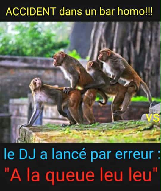 HUMOUR - blagues - Page 17 410381131776132442664159639227479902755160453708n