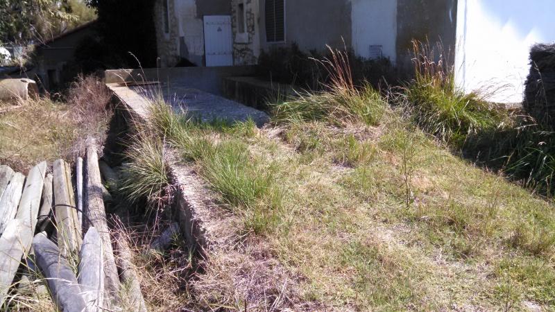 Capaple / Palissade (Camargue, Arles, 13) 410864IMG20150911131906400