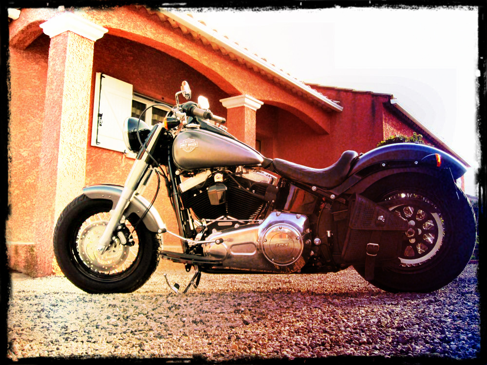 Softail Slim sous tous ses angles ! - Page 3 411004921a