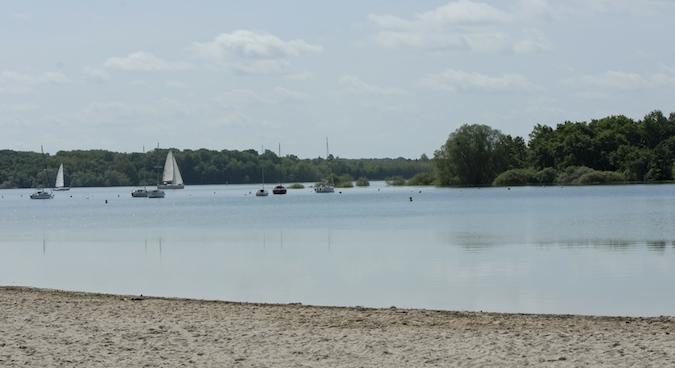Balade au Lac du Der (51-52) - weekend du 23-24 mai 2015 - Page 3 414001DSC0002
