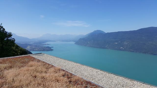 LC8 Rally western Alps - Stella alpina - Alps Tour 2016  41610620160707100009