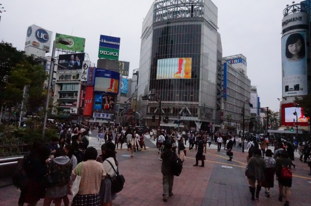 gaijin - Gaijin in Japan: Tokyo - Kyoto - Osaka [Terminé] 416781DSC01189