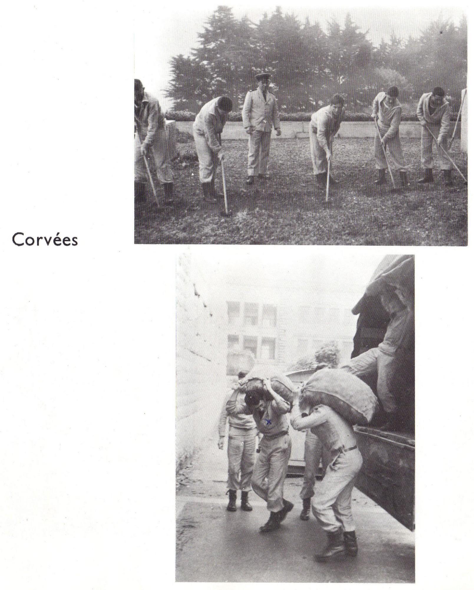 [ École des Mousses ] École des Mousses - Page 4 4198241500