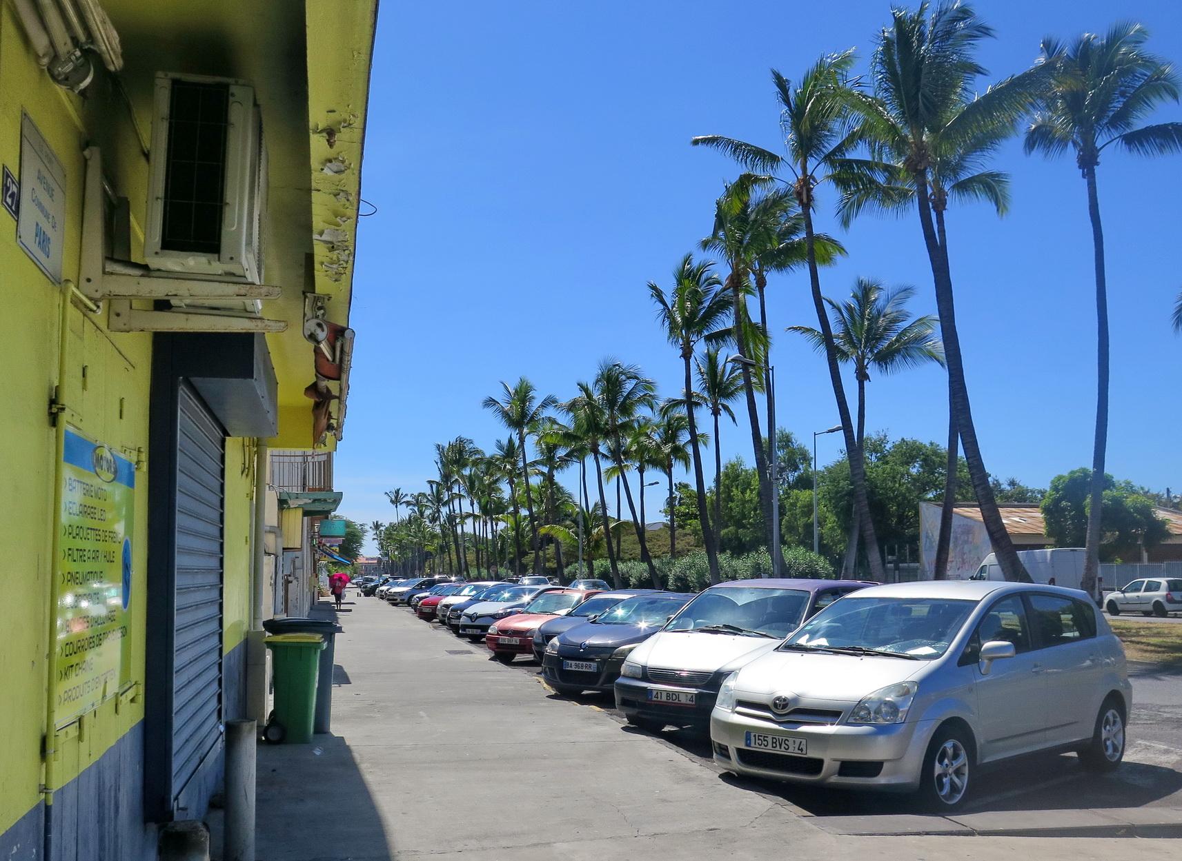 [Vie des ports] Les ports de la Réunion - Page 9 420238floral306