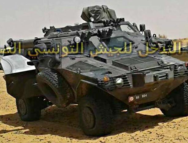 Armée Tunisienne / Tunisian Armed Forces / القوات المسلحة التونسية - Page 6 421038283970802228ea0ff6166o