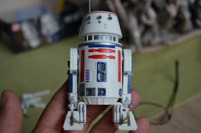 R2 D2 et R4 D4 422056DSC0366
