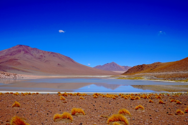 Missions scientifiques au Sud Lipez et au Salar d'Uyuni en Bolivie 423326DSC00327