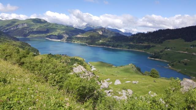 LC8 Rally western Alps - Stella alpina - Alps Tour 2016  428693selectionalpesTour8