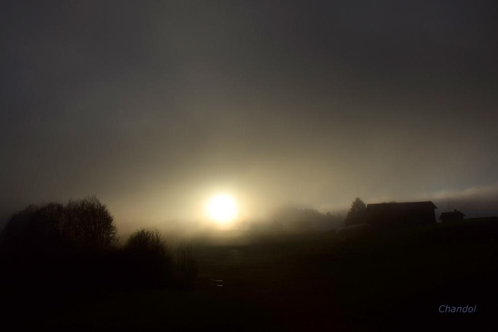 Brouillard 428875DSC0467001