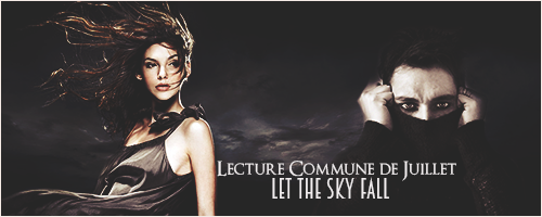 LET THE SKY FALL de Shannon Messenger 438005lcjuillet2