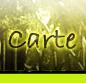 Alona RPG 441755carte