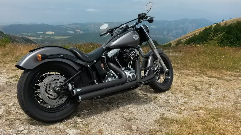 Softail Slim sous tous ses angles ! - Page 9 442052rd3