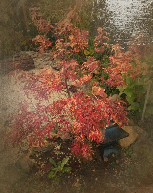 l'automne arrive... - Page 5 444301tableau415383265
