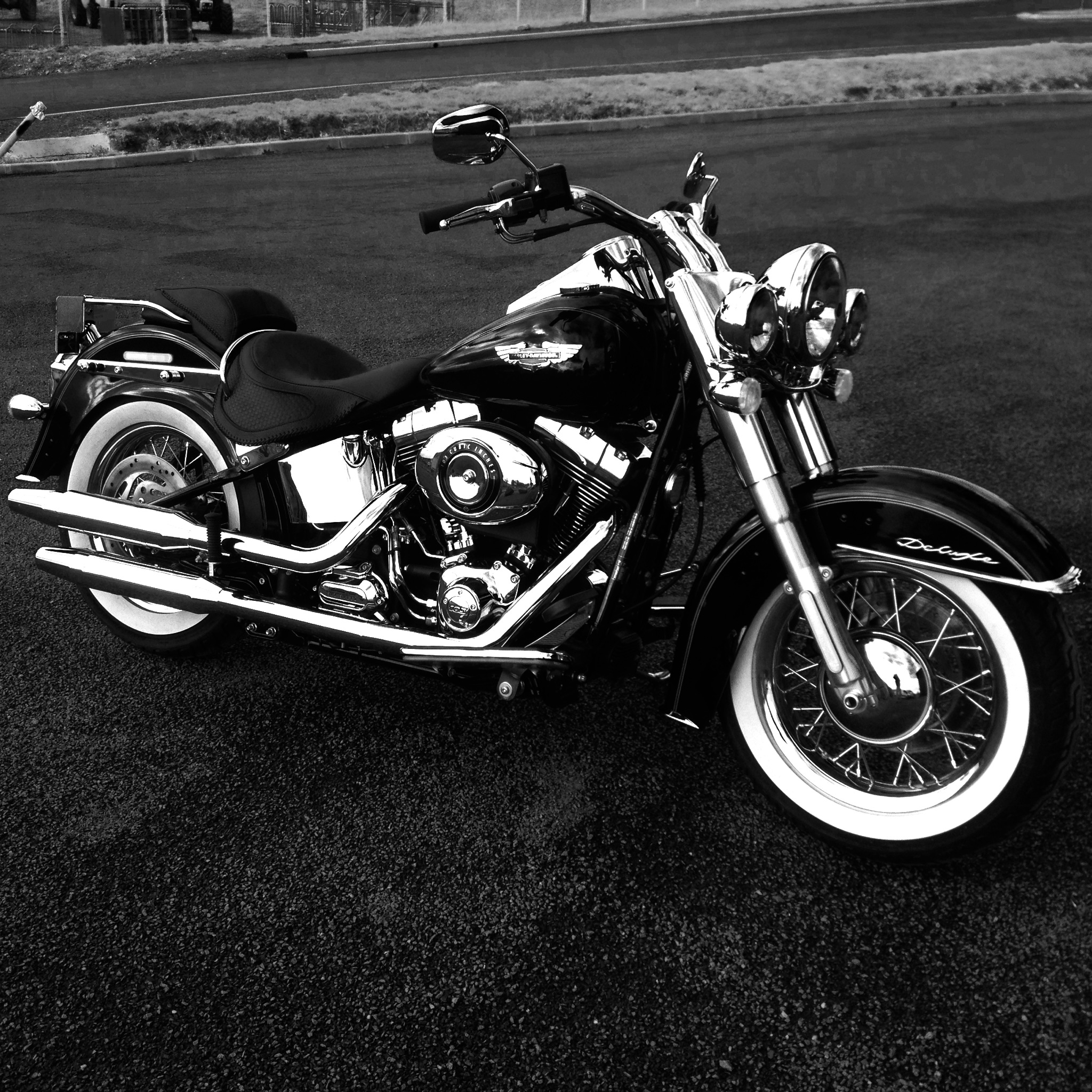 Combien de Softail sur le forum Passion-Harley - Page 12 444435photomoto