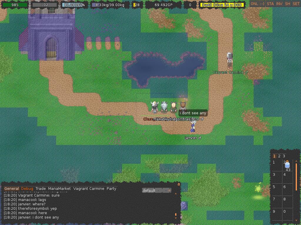 Présentation de MMORPG 2D amateurs 453728Awildlagappers