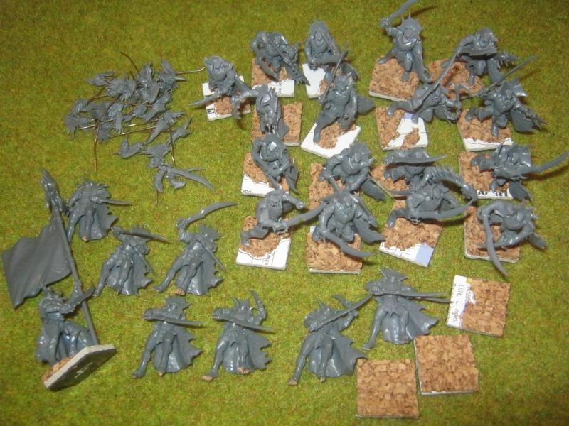 [Vente] LIQUIDATION Skavens, Chaos, Elfes Noirs 454292IMG0235