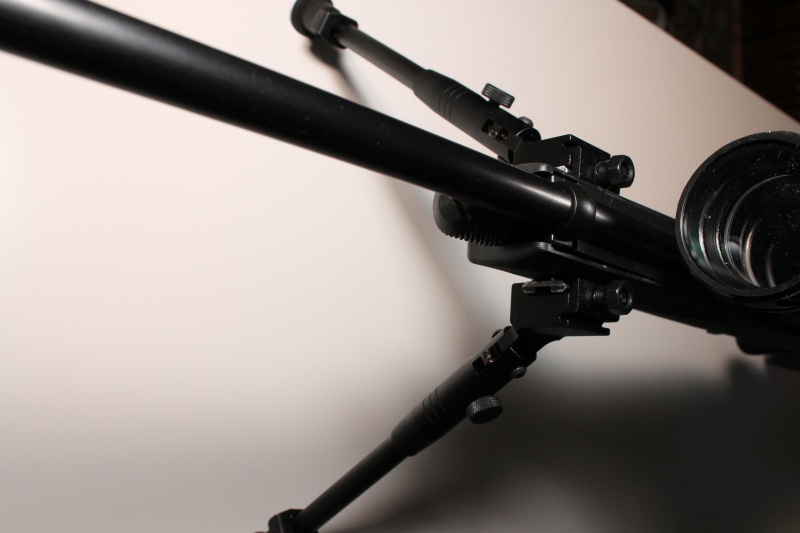 Mes armes CO2 456833IMG3473