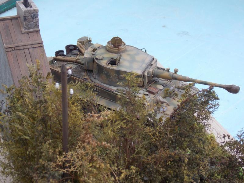 TIGRE S33  avant la bataille de Koursk juillet 43 (Dragon 1/35 dio DIODUMP) - Page 8 457768DSCN4714