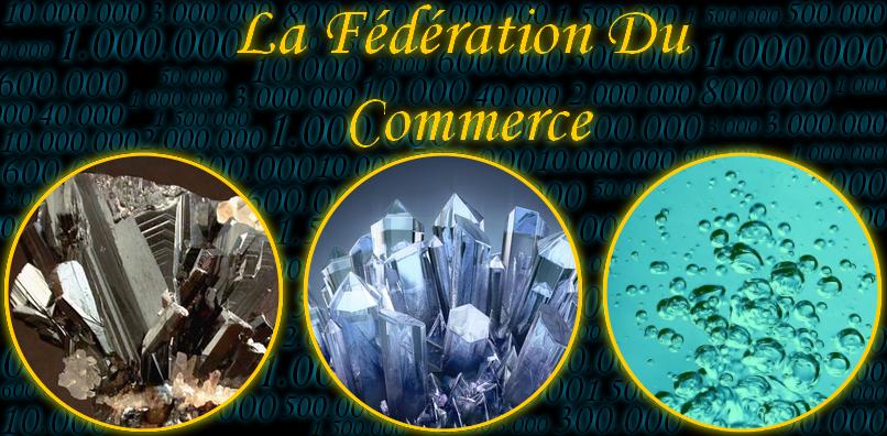 La fédération du commerce
