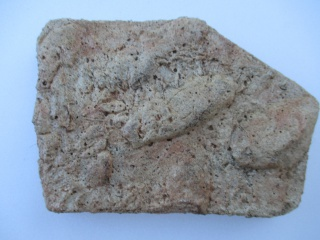 Encore quelques photos de pierres 459454IMG0051