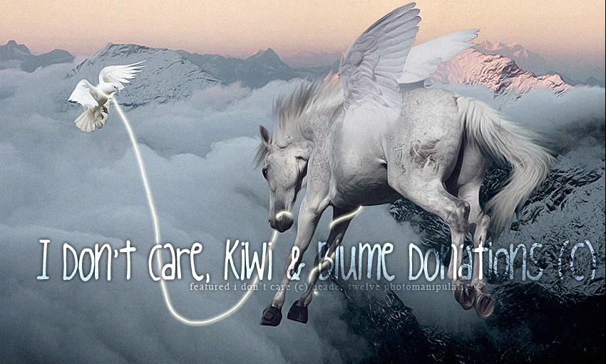 Idc, Kiwi & Blume Donnations. (c)