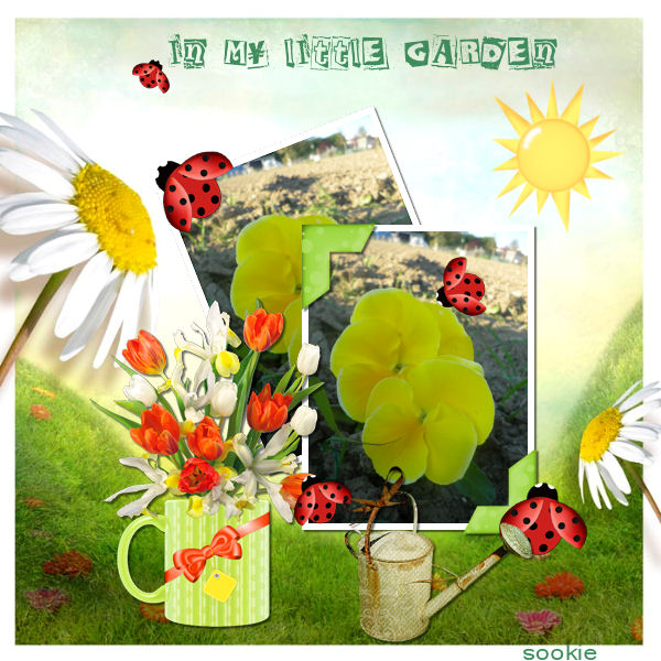 pages avril- mai- juin 2015 - Page 2 481121mygardennning