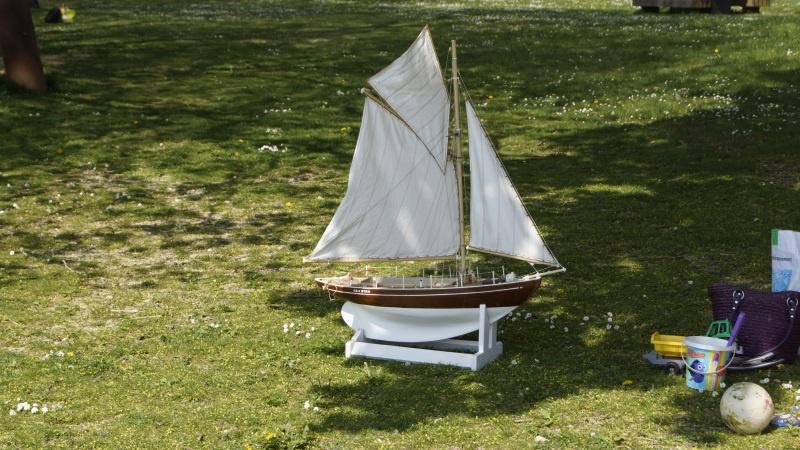 Seagull (plan MRB 1/10°) par bibine - Page 2 487999DSC5463