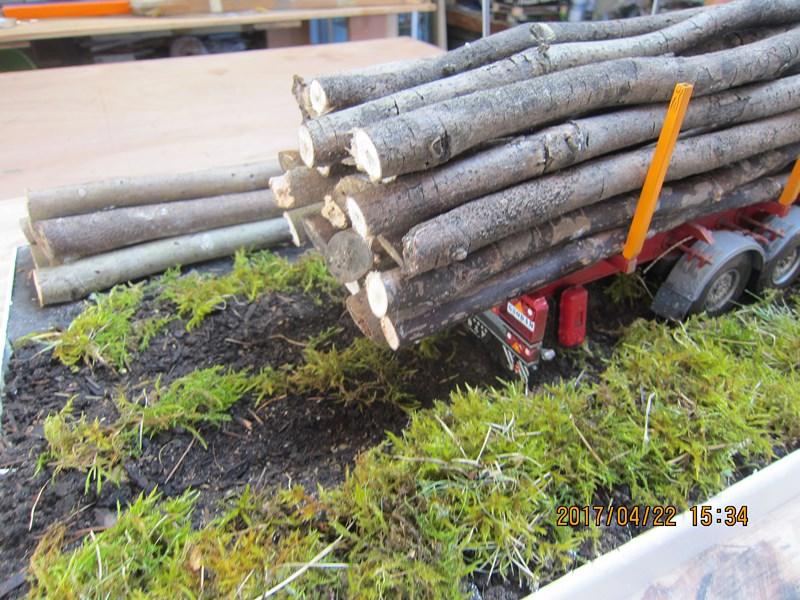 Le bois et le transport 491359IMG4484Copier