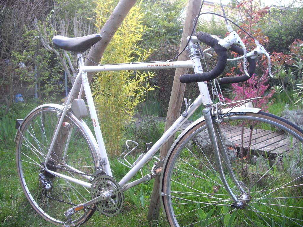 Peugeot PF60 1983 491927IMGP3668