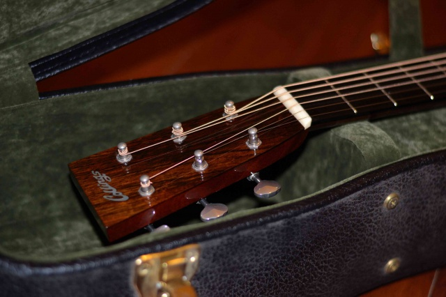 COLLINGS TOPIC - Page 4 495914DSC0650