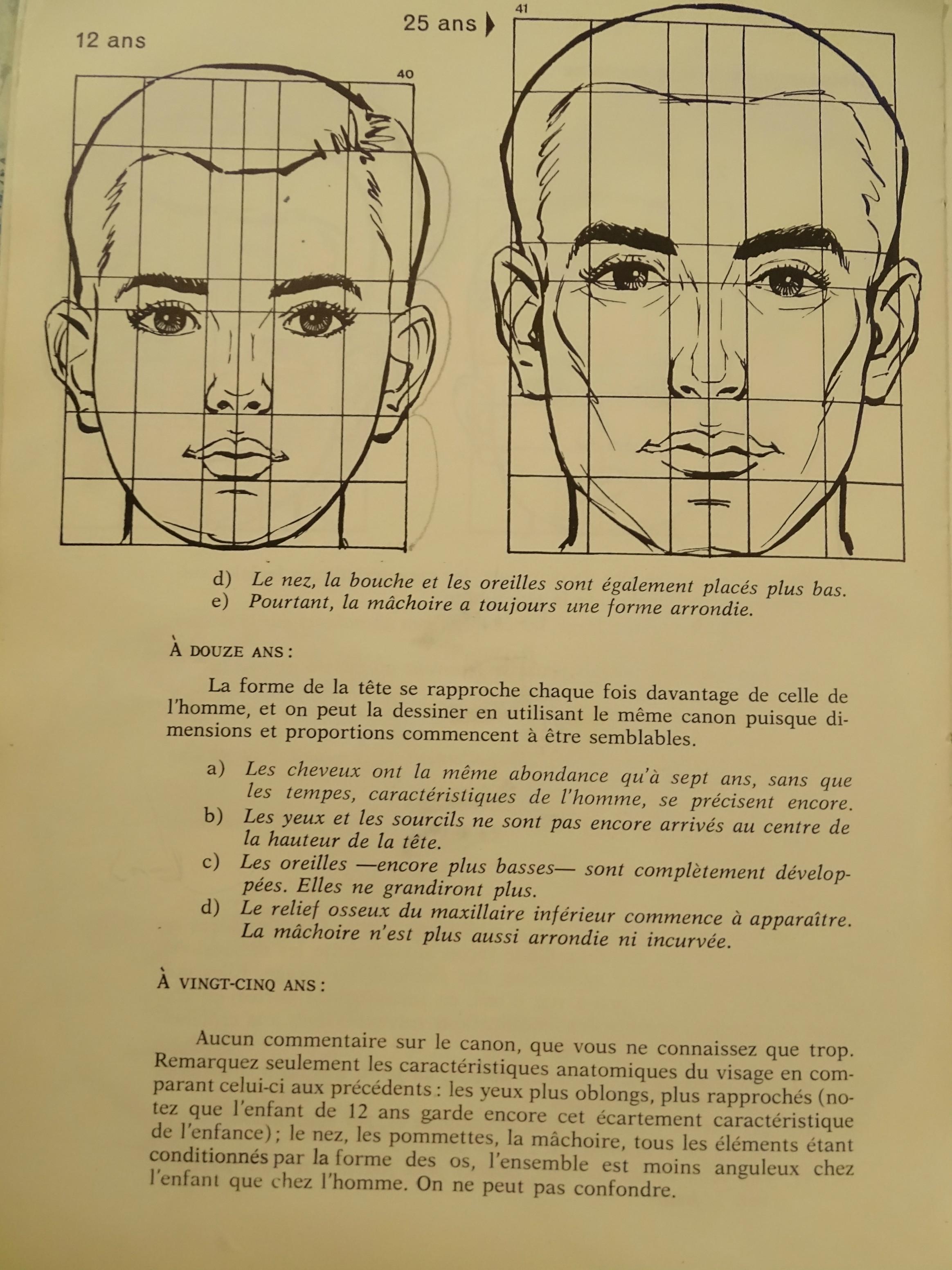 Canons de la tête humaine (Bébé, enfant) 498634canonado