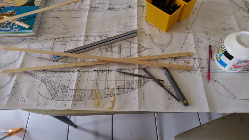 Seagull (plan MRB 1/10°) par bibine - Page 6 500227IMG20150322133838