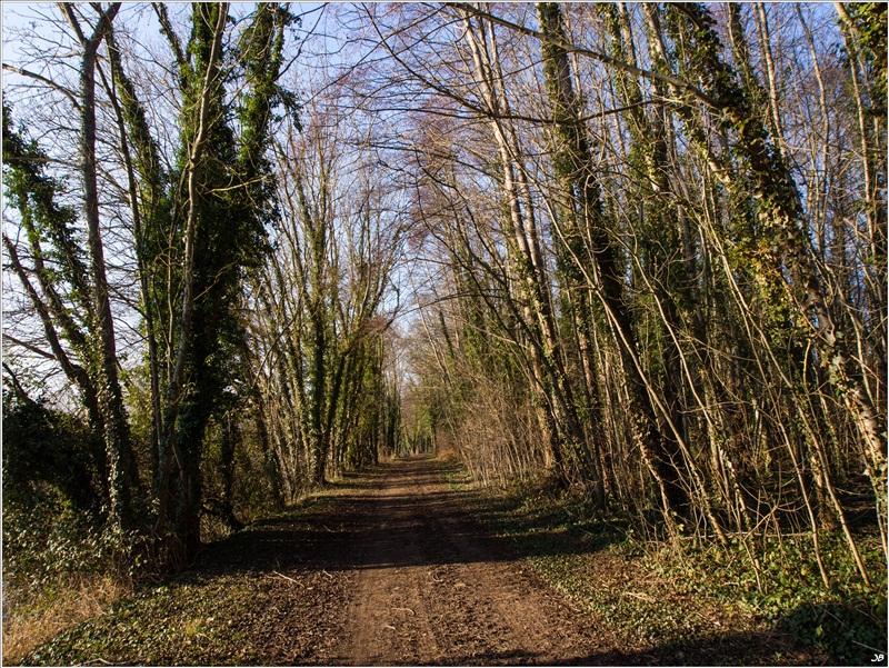 De Pont sur Yonne à Sixte 501158LR4P2190066