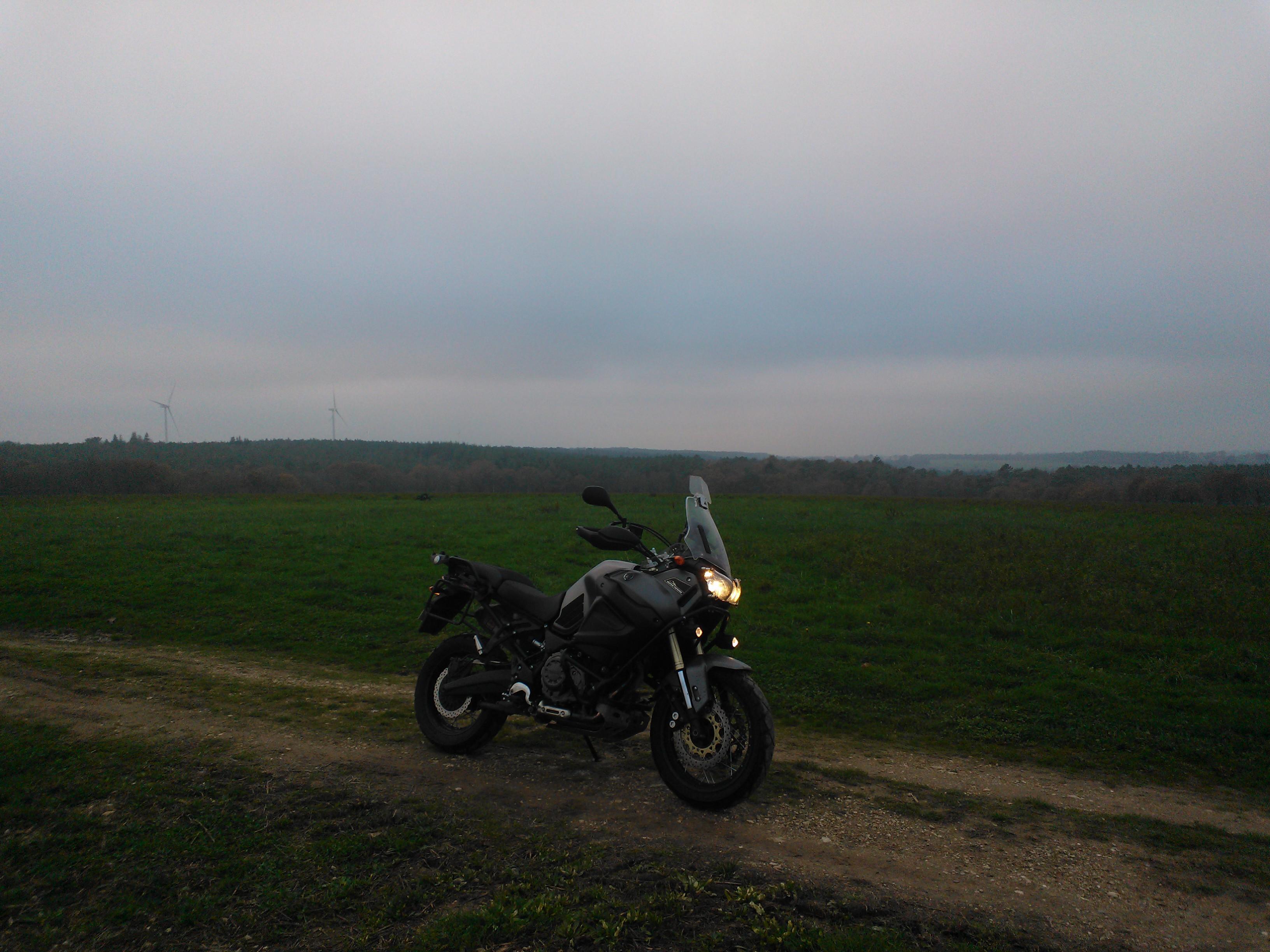 Balade dans les champs en Bretagne 503410WP201411301
