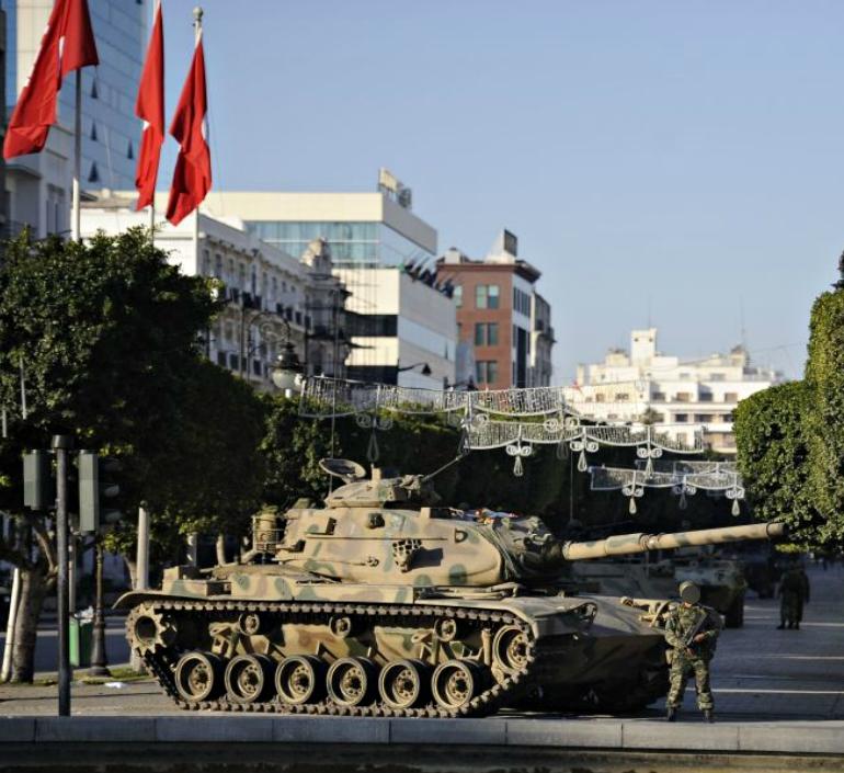 Armée Tunisienne / Tunisian Armed Forces / القوات المسلحة التونسية - Page 4 507124306564027