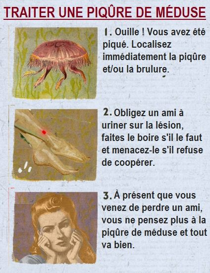 HUMOUR - blagues - Page 17 508461Mduse