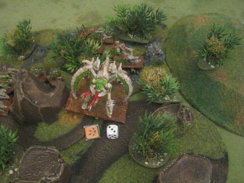 Assaut sur Zebra (campagne narrative) - Page 2 514702IMG0216