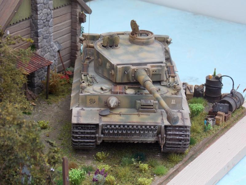TIGRE S33  avant la bataille de Koursk juillet 43 (Dragon 1/35 dio DIODUMP) - Page 8 515793DSCN4716