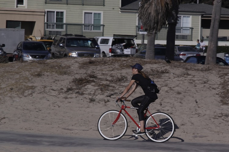 Venice Beach 520316MG1386