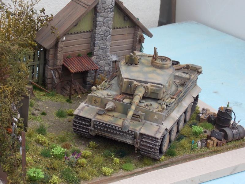 TIGRE S33  avant la bataille de Koursk juillet 43 (Dragon 1/35 dio DIODUMP) - Page 8 520970DSCN4717