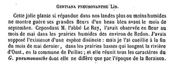 Gentiane pneumonanthe 5227271868