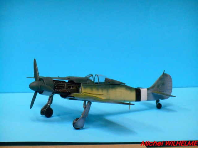 FOCKE WULF 190 D9  kit force of valor 1/72 523288DSCN7526Copier