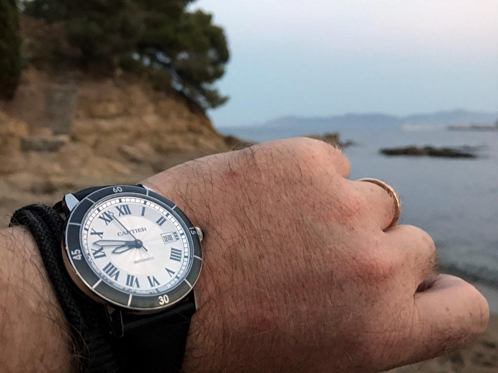 Votre montre du jour - Page 31 525496IMG8543