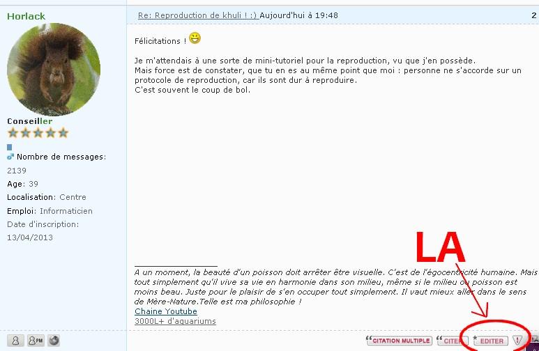 Lancement Aquarium 60 l 529198Sanstitre4
