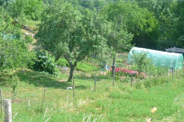 CR (Photos & Vidéo)  : TSO : 06-07/06/15 Sortie au Viaduc de Millau & environs 530019P1180603