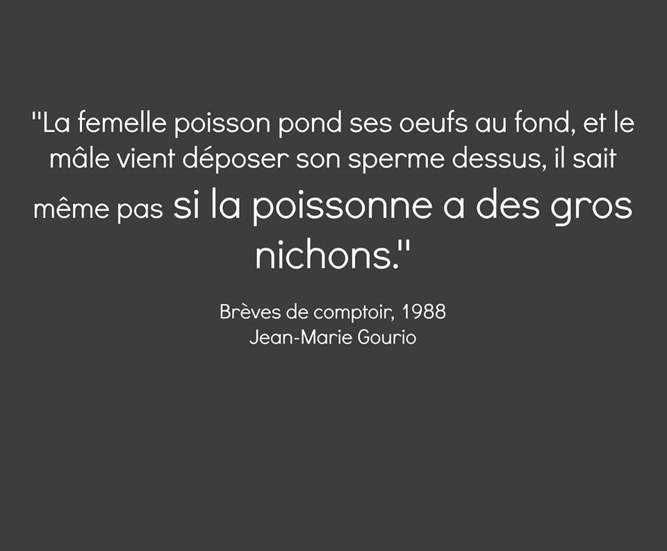 HUMOUR - blagues - Page 4 530639Gronichon