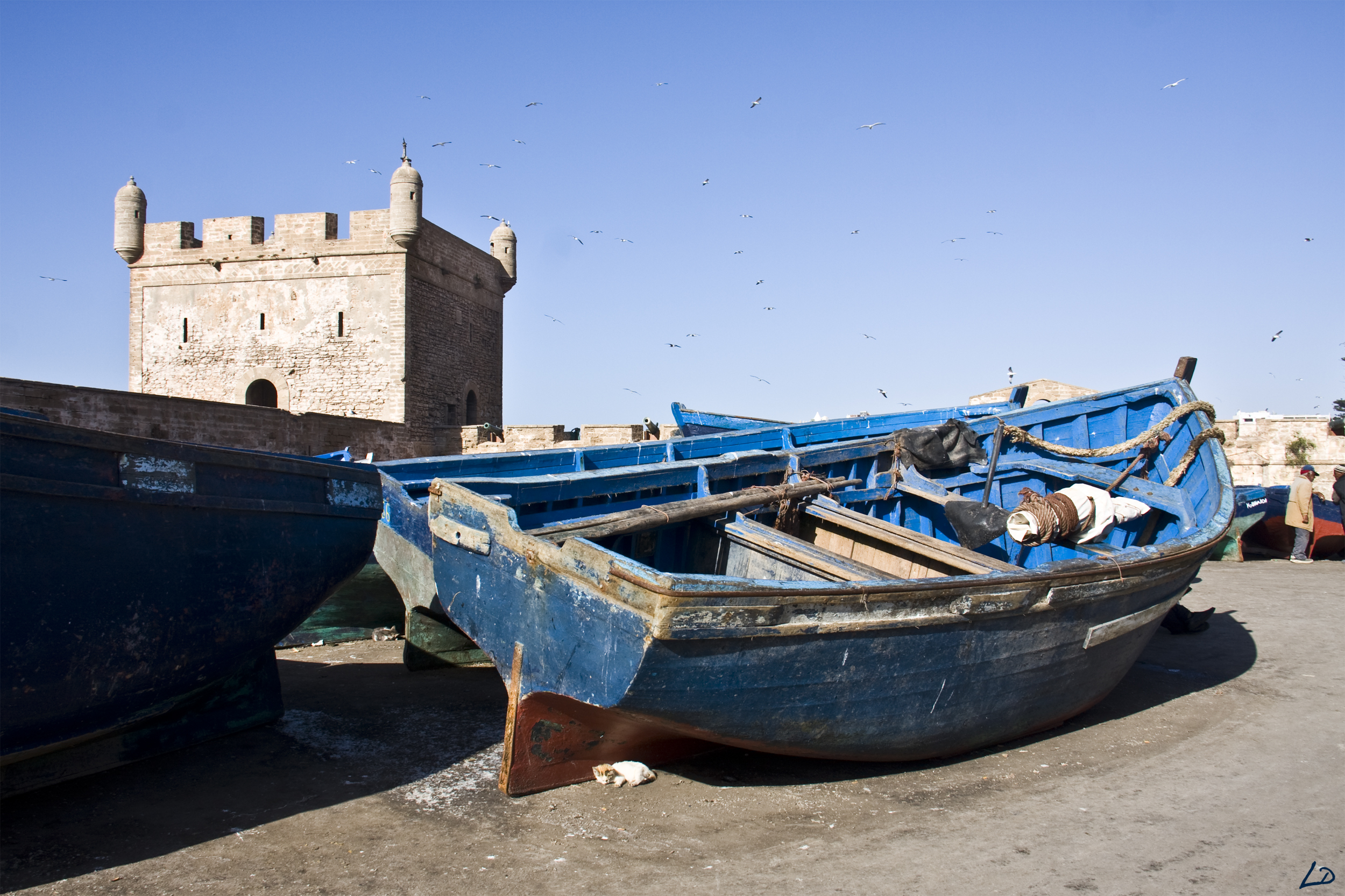 MAROC : Essaouira 533733201311029830