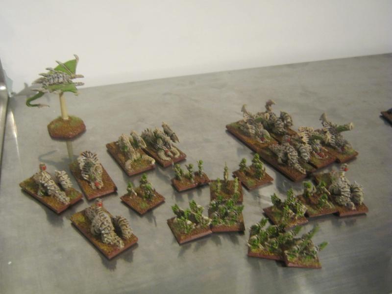 Assaut sur Zebra (campagne narrative) - Page 2 543742IMG0206