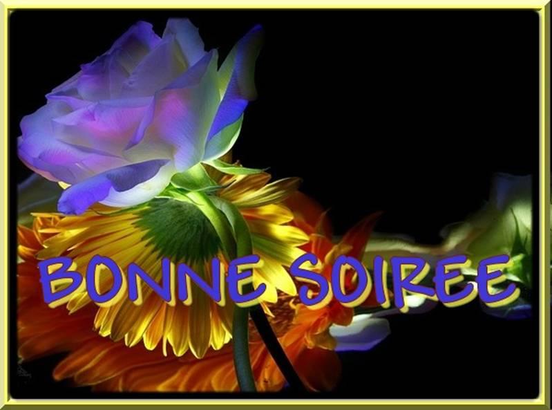 bonne nuit !!! - Page 51 544459image0018